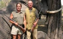 Săn voi, vua Tây Ban Nha mất chức chủ tịch WWF