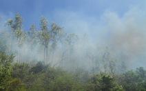 Một ngày xảy ra 6 vụ cháy rừng