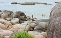 Dạo chơi biển Tân Phụng