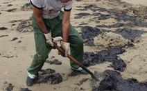 LHQ đề xuất sáng kiến bảo vệ đại dương