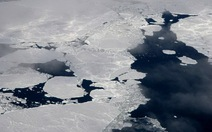 Biển băng Bắc cực thu hẹp mức kỷ lục