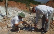 """Ngừng thăm dò """"kho báu 4.000 tấn vàng"""" tại núi Tàu"""