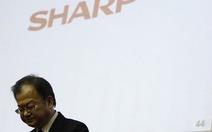 Panasonic và Sharp vẫn chìm trong khủng hoảng