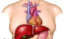 Ai được ghép gan và cho gan?