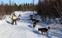 Xứ sở tuyết trắng Kiruna