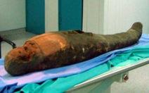 Phát hiện dao mổ trong xác ướp cổ Ai Cập