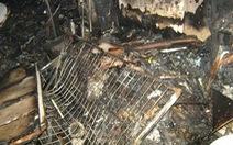 Cháy cửa hàng đồ ôtô, hai cụ già thoát chết