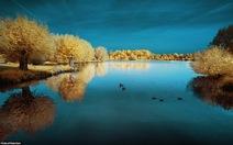 Thiên nhiên nước Pháp qua ống kính hồng ngoại