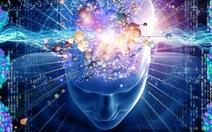 IQ là hoang đường?