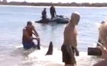 Tay không bắt cá mập cứu trẻ em