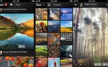 Apple loại 500px ra khỏi chợ ứng dụng App Store