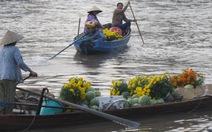 Sắc xuân ngập tràn chợ nổi Phong Điền
