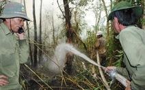 Cà Mau: cháy rừng tràm rừng U Minh