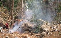 Cách chức huyện ủy viên một phó giám đốc Vườn quốc gia