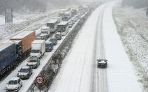 Châu Âu cứng người trong băng tuyết phủ trắng