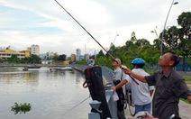 Tàn sát cá trên kênh Nhiêu Lộc