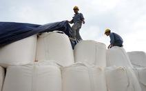 Bôxit Tân Rai: alumin tồn kho 20.000 tấn, công nhân thiếu việc