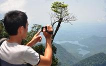 Đóng cửa 3 năm, vườn quốc gia Bạch Mã mở cửa trở lại