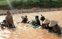 Đào đãi vàng dưới đập thủy điện Plei Krông