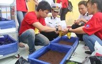 Chuyển giao thiết bị trồng rau sạch cho chiến sĩ Trường Sa