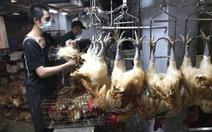 H7N9 có thể lây từ người sang người