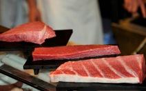 Phóng xạ ở cá hồi Fukushima: hàm lượng chỉ bằng ăn chuối