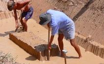 Bỏ lúa đào ao nuôi cá lóc