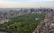 Ấn tượng những công viên xanh ở New York