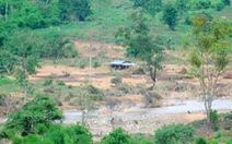 Xác định nguyên nhân vỡ đập thủy điện khủng khiếp ở Gia Lai
