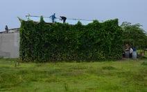 Một tháng, 550 nhà không phép mọc giữa đồng cỏ