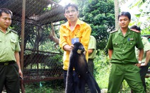 Giải cứu thú trong trang trại quan chức tỉnh