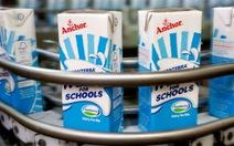 36 giờ thu hồi 10.135 thùng sữa nghi nhiễm khuẩn