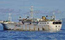 Bốn thủy thủ Việt đã liều chết khi nhảy xuống biển