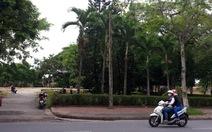 Trường thanh niên tiền tuyến Huế thành công viên