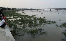 Lần đầu tiên sông Nhật Lệ đầy lục bình