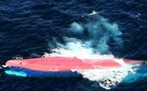 Nhật bắt thủy thủ Trung Quốc sau va chạm tàu