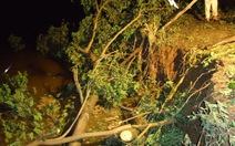 An Giang: sạt lở nặng ở bờ kinh Bảy Xã