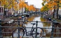Khi bạn có nửa ngày ở Amsterdam