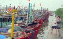 Hải Phòng sơ tán gần 80.000 người tránh bão Haiyan