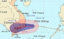 Áp thấp nhiệt đới đã mạnh lên thành bão số 15