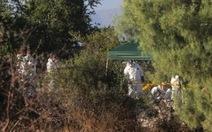 Phát hiện 48 thi thể bị tra tấn ở Mexico