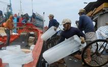 Lý Sơn: hàng trăm tàu cá của ngư dân vươn khơi bám biển