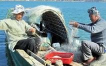 Mẻ cá đầu năm trên sông Nhật Lệ