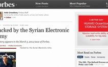 Website Forbes và KickStarter bị hack, dữ liệu bị công khai