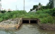 Dùng rừng Cần Giờ xử lý ô nhiễm sông Thị Vải