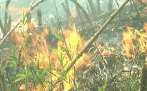 Hơn 500 người chữa cháy ở Vườn quốc gia Hoàng Liên