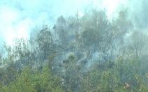 Dập tắt cháy rừng Vườn quốc gia Hoàng Liên