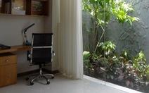 """""""Bí kíp"""" mang không gian xanh vào nhà"""