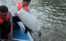 Thả 450.000 cá giống xuống kênh Tàu Hủ