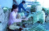 Đừng dồn gánh nặng lên vai người trồng lúa